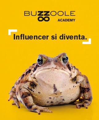 Buzzoole Academy